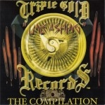 Triple Gold Records - Unleashing: The Compilation