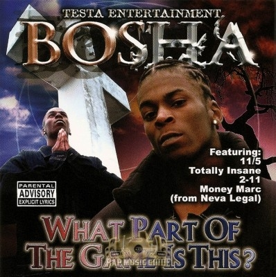 Bosha - What Part Of The Game Is This?