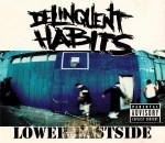 Delinquent Habits - Lower Eastside
