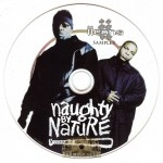 Naughty By Nature - IIcons Album Sampler