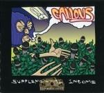 Callous - Supplelmental Income