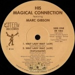 His Magical Connection - Wait Lady Wait