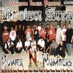 Brown Area - Power N Numbers