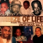 R.O.W.D.E. Presents Breeze Of Life - From The Upcoming Album Uncut Music Vol. 1