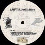 A Brotha Named Quick - Never In Your Wildest Dreams