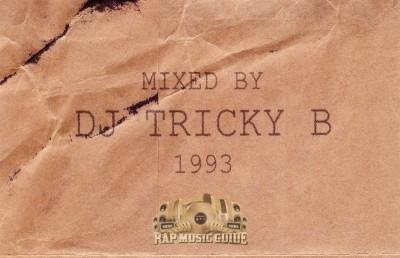 DJ Tricky B - Cardboard Flava