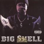 Big Shell - Big Shell