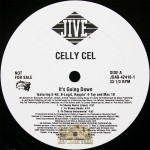 Celly Cel - It's Goin' Down Remix
