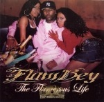 Flambey - The Flamerous Life