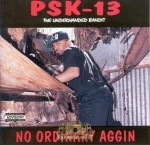 PSK-13 - No Ordinary Aggin