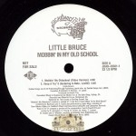Little Bruce - Mobbin' In My Old School
