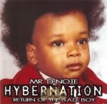 Mr. D-Note - Hybernation