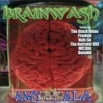 Brainwash - Amygdala
