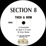Section 8 - Then & Now