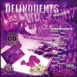 The Delinquents - The Purple Project: Mix CD Vol. 2