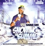 Shad Gee - Snowing In The Summer