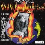 Heartlez Records Presents - What Ya Know Bout Da South