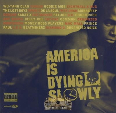 Various Artists - America Is Dying Slowly