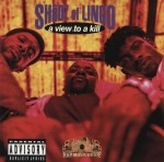 Shadz Of Lingo - A View To A Kill