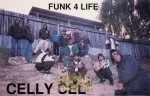 Celly Cel - Funk 4 Life