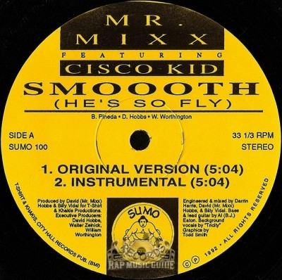 Mr. Mixx featuring Cisco Kid - Smoooth (He's So Fly)