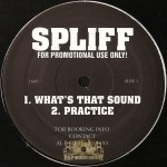 Spliff - What's That Sound / Practice